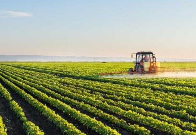 agricultura eurocalcio
